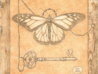 Drawings & Studies