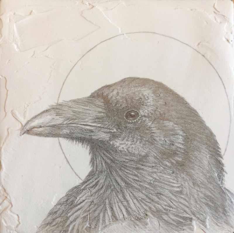 Marque-Todd-Silver-Raven